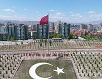 ETİMESGUT'TA 25 NOKTADA 700DÖNÜMLÜK ORMAN KURULDU